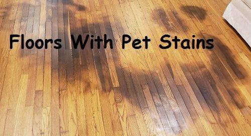 Blog Hardwood Floor Refinishing New, How Do You Remove Urine Stains On Laminate Flooring