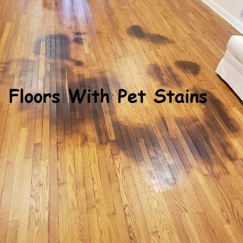 Refinishing-Hardwood-Floors-With-Pet-Stains-12-